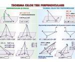 Teorema celor trei perpendiculare (faţa) // Sfera circumscrisa corpurilor de rotaţie (verso)